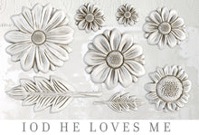 Load image into Gallery viewer, He Loves Me | Decor Mould | IOD