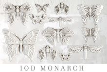 Load image into Gallery viewer, Monarch | Decor Mould | IOD