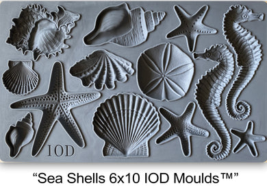 Sea Shells | IOD Moulds