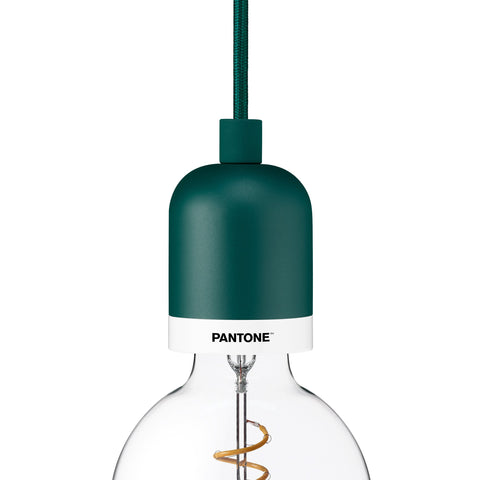 Deneb Mini Pendant by Pantone BIOME FOREST