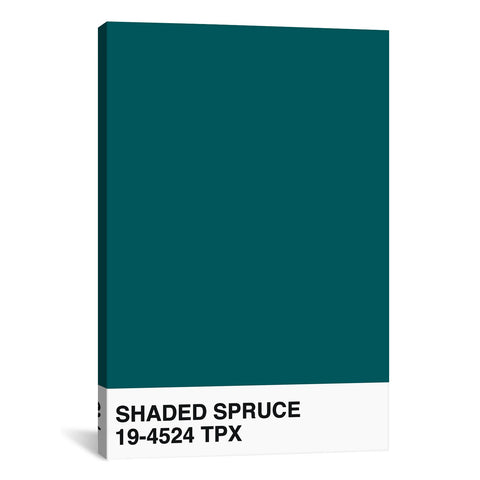 Shaded Spruce 19-4524 TPX by Honeymoon Hotel