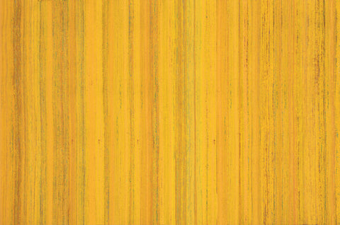 Kinsie Area Rug YELLOW - Apt2B - 1