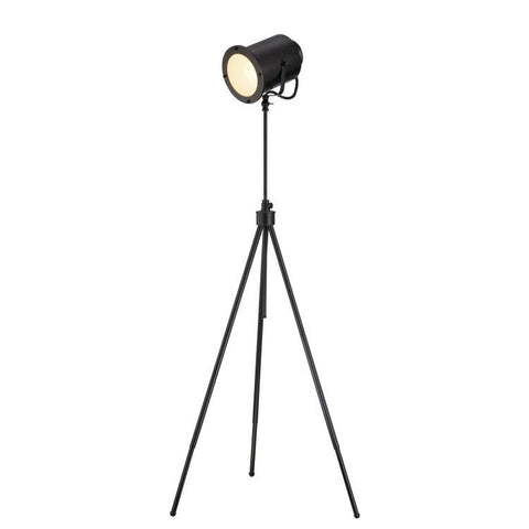 Director Floor Lamp - Apt2B