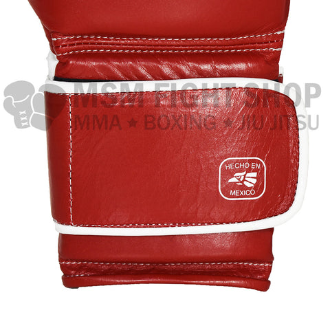 Everlast Mexican Boxing Gloves velcro