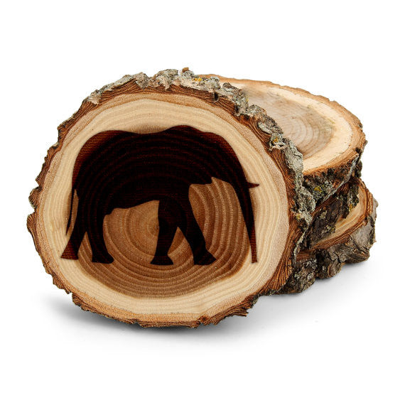 Elephant Amazon Tree Bark Coasters,