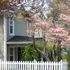 4 Easy Home Updates to Make This Spring