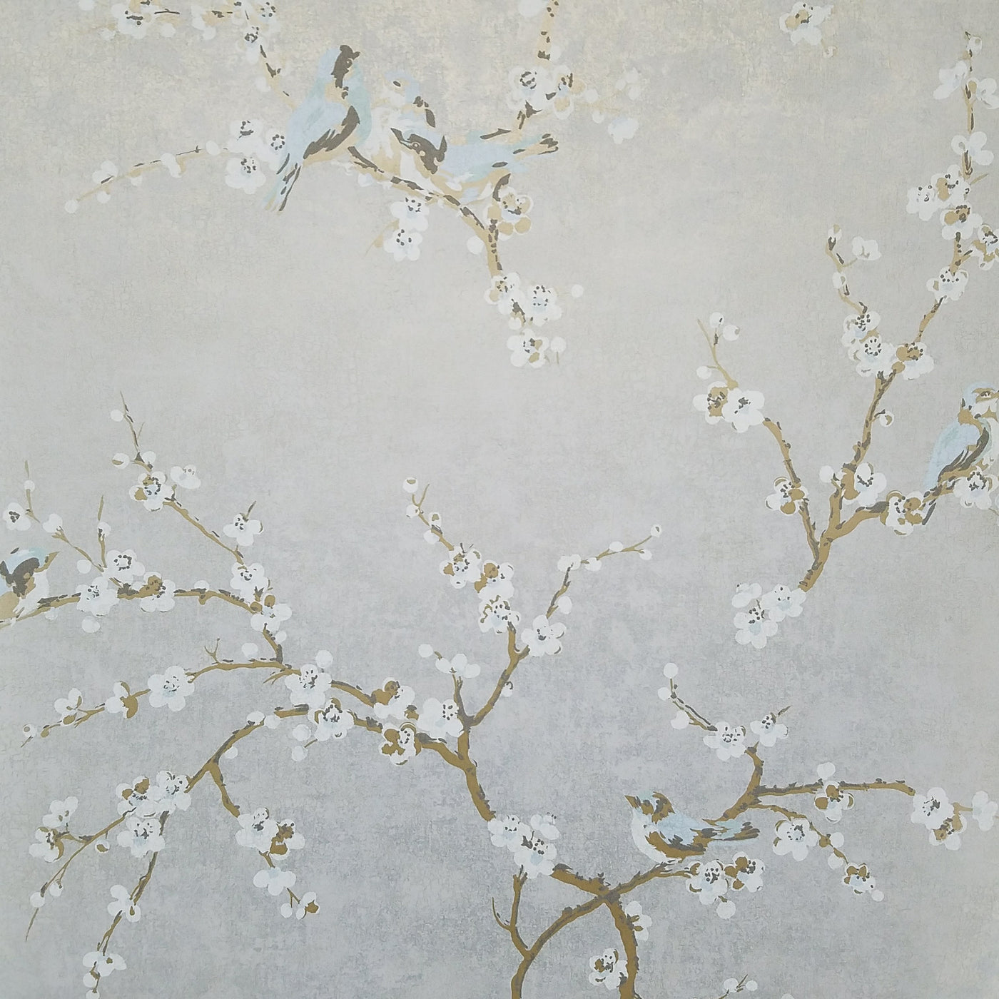 Birds And Blossoms On Silvery Gray Wallpaper Hp0325 D