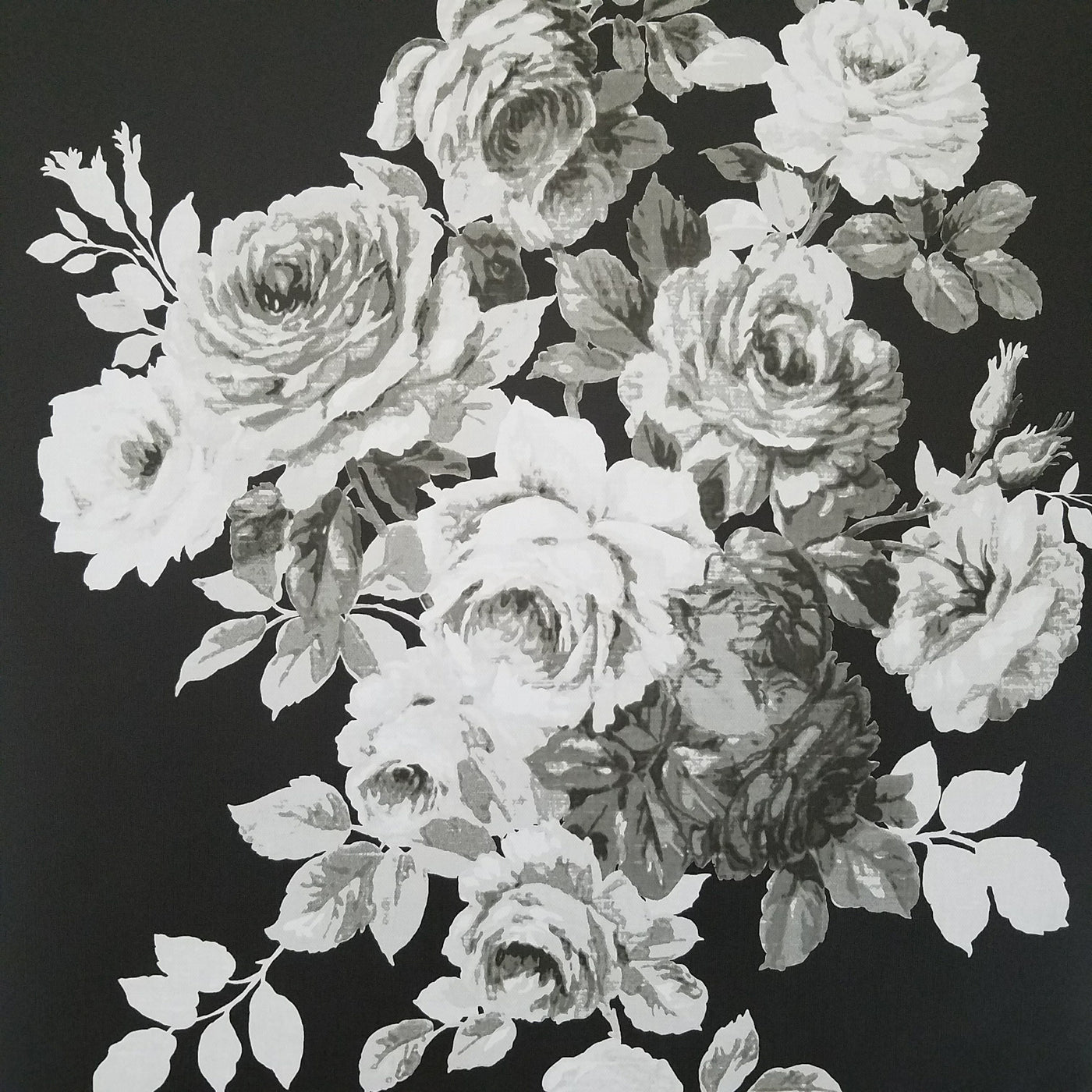 Magnolia Home Tea Rose Black And White Floral Wallpaper Me1533 D