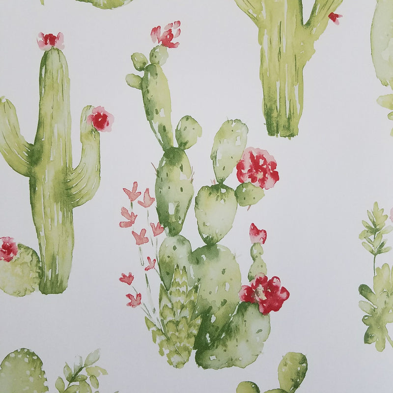 Watercolor Botanical Cactus Wallpaper