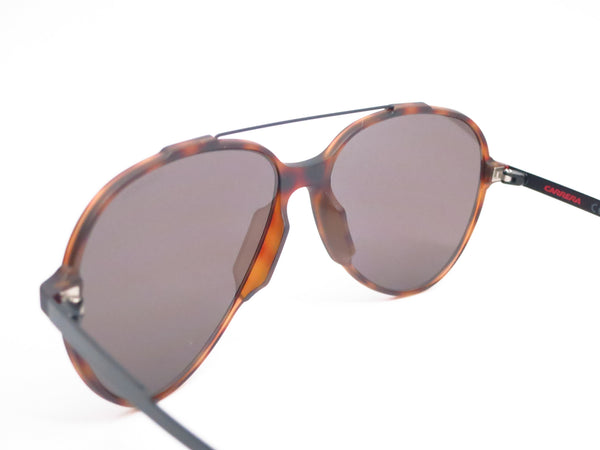 Carrera 118/S L2LNR Havana Black Sunglasses - Eye Heart Shades - Carrera - Sunglasses - 6