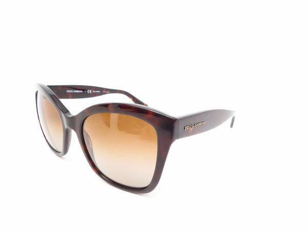 Dolce & Gabbana DG 4240 502/T5 Havana Polarized Sunglasses - Eye Heart Shades - Dolce & Gabbana - Sunglasses - 1