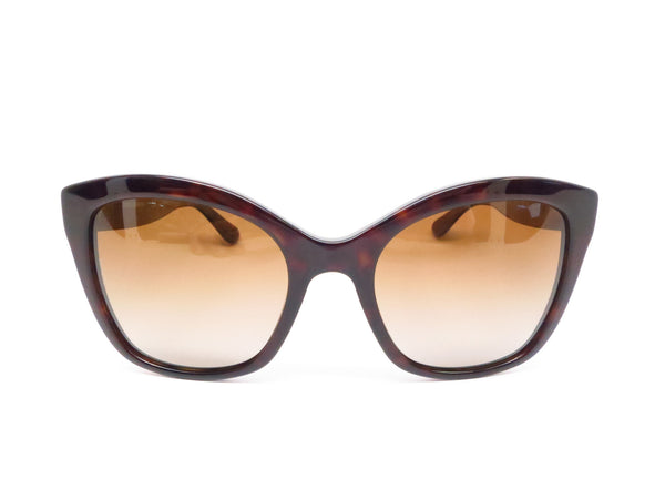 Dolce & Gabbana DG 4240 502/T5 Havana Polarized Sunglasses - Eye Heart Shades - Dolce & Gabbana - Sunglasses - 2