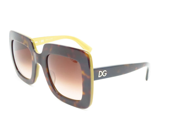 Dolce & Gabbana DG 4263 2956/13 Top Havana on Gold Sunglasses - Eye Heart Shades - Dolce & Gabbana - Sunglasses - 1