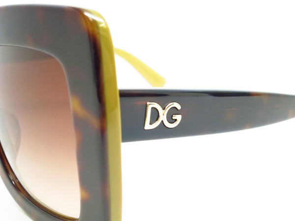 Dolce & Gabbana DG 4263 2956/13 Top Havana on Gold Sunglasses - Eye Heart Shades - Dolce & Gabbana - Sunglasses - 5