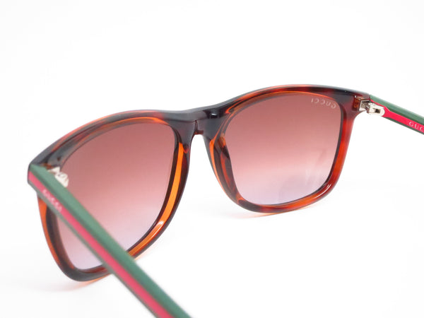 Gucci GG 1055/S 0VYTF Havana Sunglasses - Eye Heart Shades - Gucci - Sunglasses - 6