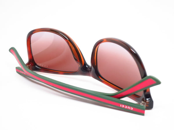 Gucci GG 1055/S 0VYTF Havana Sunglasses - Eye Heart Shades - Gucci - Sunglasses - 8