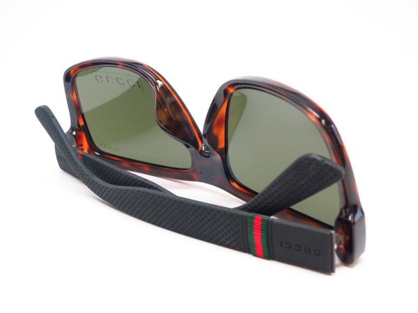 Gucci GG 1124/F/S M1W/1E Havana Black Sunglasses - Eye Heart Shades - Gucci - Sunglasses - 8