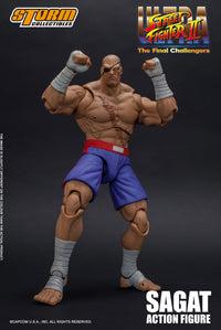Street Fighter II Sagat