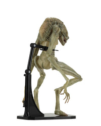 Alien: Resurrection Deluxe Newborn