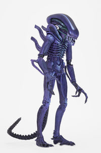 NECA Club x Alien Exclusive Purple Warrior