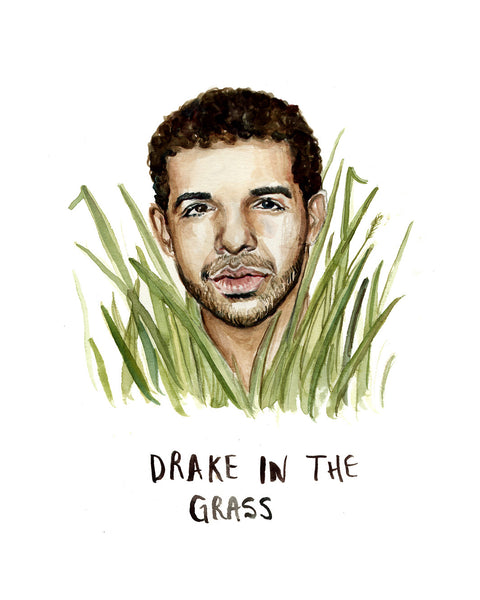 Drake in the Grass - Greeting Card