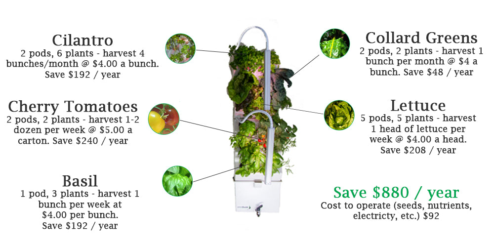 Save money by growing food at home with a VerdeGraze, automated vertical garden