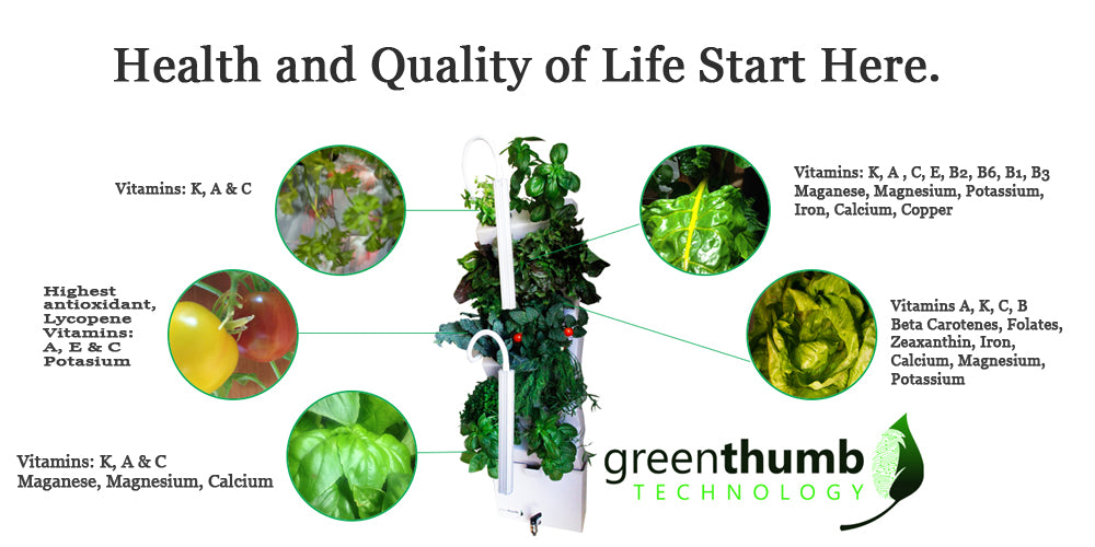 Grow fresh herbs indoors with the indoor garden, the VeggieWall. Made for urban gardeners.