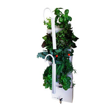 Load image into Gallery viewer, Vertical Self-watering Indoor Garden | VerdeGraze 36