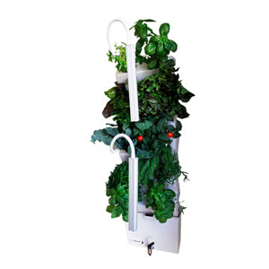 Vertical Self-watering Indoor Garden | VerdeGraze 36