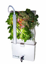 Load image into Gallery viewer, Vertical Self Watering Indoor Garden | VerdeNibble