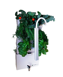 Vertical Self Watering Indoor Garden | VerdeNibble