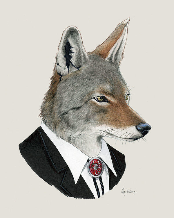 Coyote Art Print – Berkley Illustration
