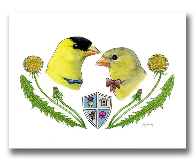Goldfinch Bird Couple