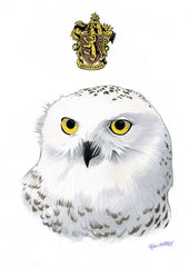 Hedwig The Owl - Cinematic Fauna Limited Edition Art Print
