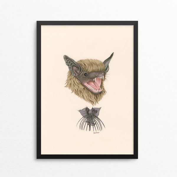 Bat / Black Bat Flower - Naked Animals Print