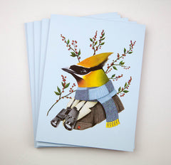 Holiday Card Set - Cedar Waxwing