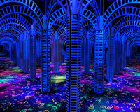 Mirror Maze Fun Facts and History