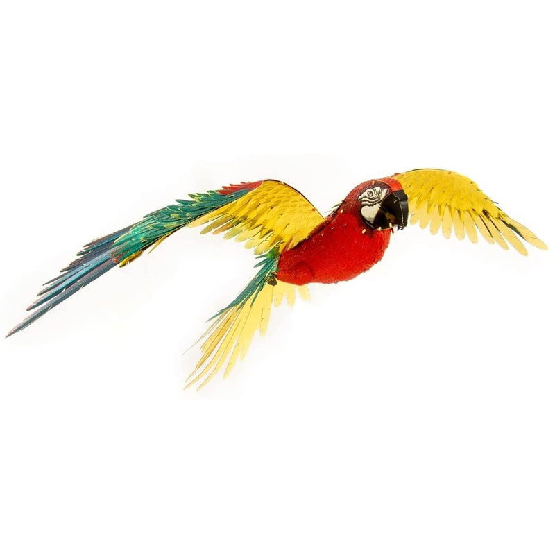 Front view of the completed parrot.