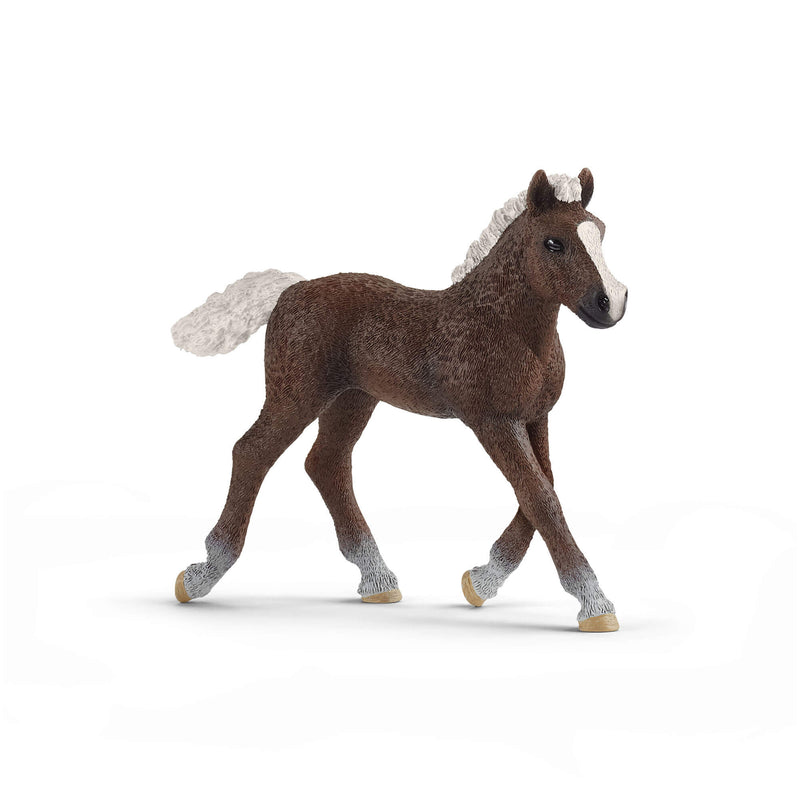 Schleich Farm World Black Forest Foal Animal Figure