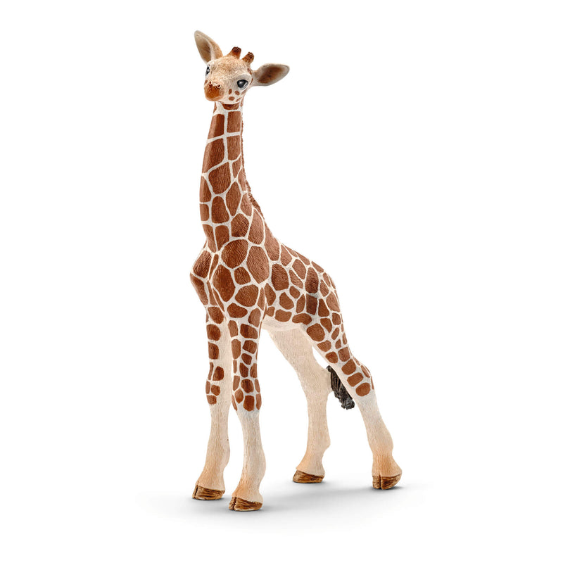 Schleich Wild Life Giraffe Calf Animal Figure
