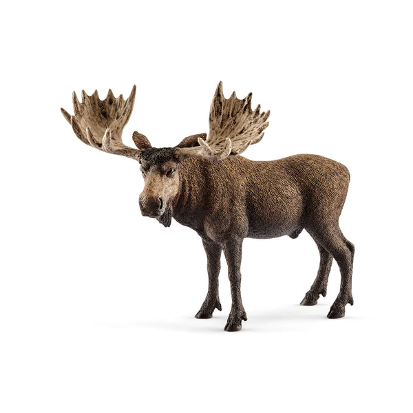Schleich Wild Life Moose Bull Animal Figure