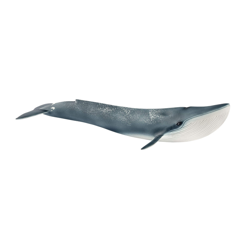 Schleich Wild Life Blue Whale Animal Figure