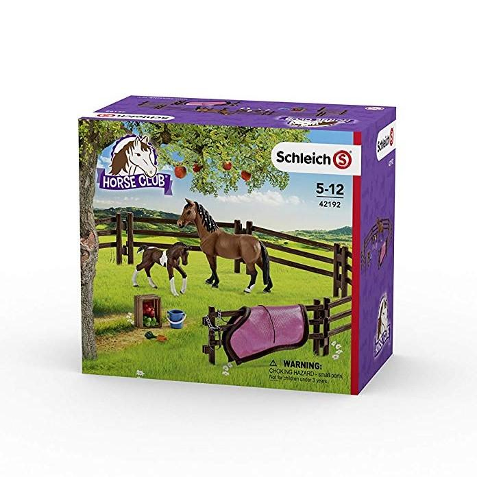 Schleich Farm World Paddock Play Set