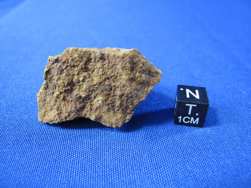 Clarendon (c) - The new Texas stone meteorite for sale!