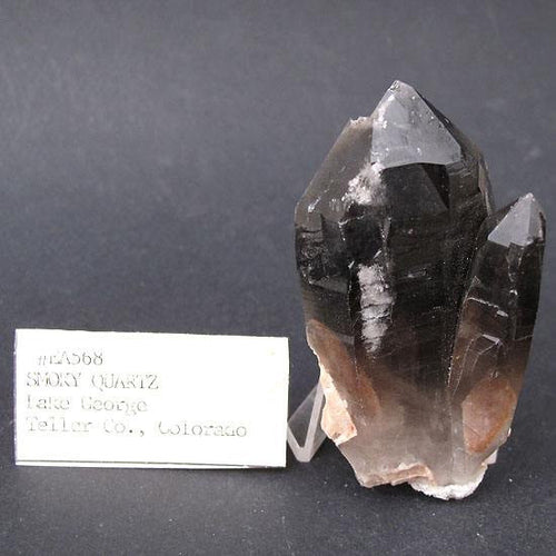 Smoky quartz crystal from Lake George, Teller County, Colorado, old stock