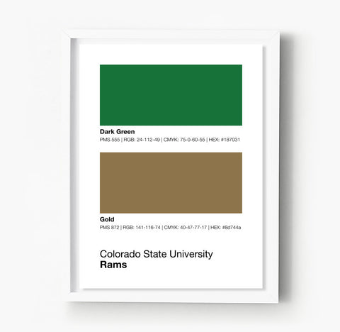 Boston University Terriers Gameday Colors Print