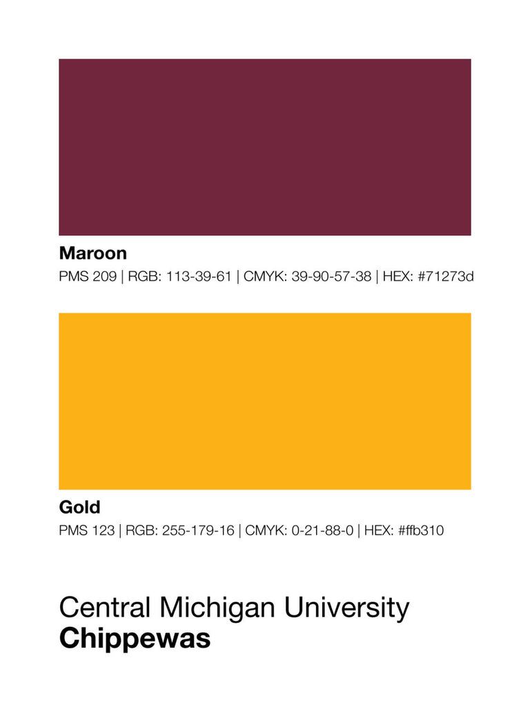 central-michigan-chippewas-shop