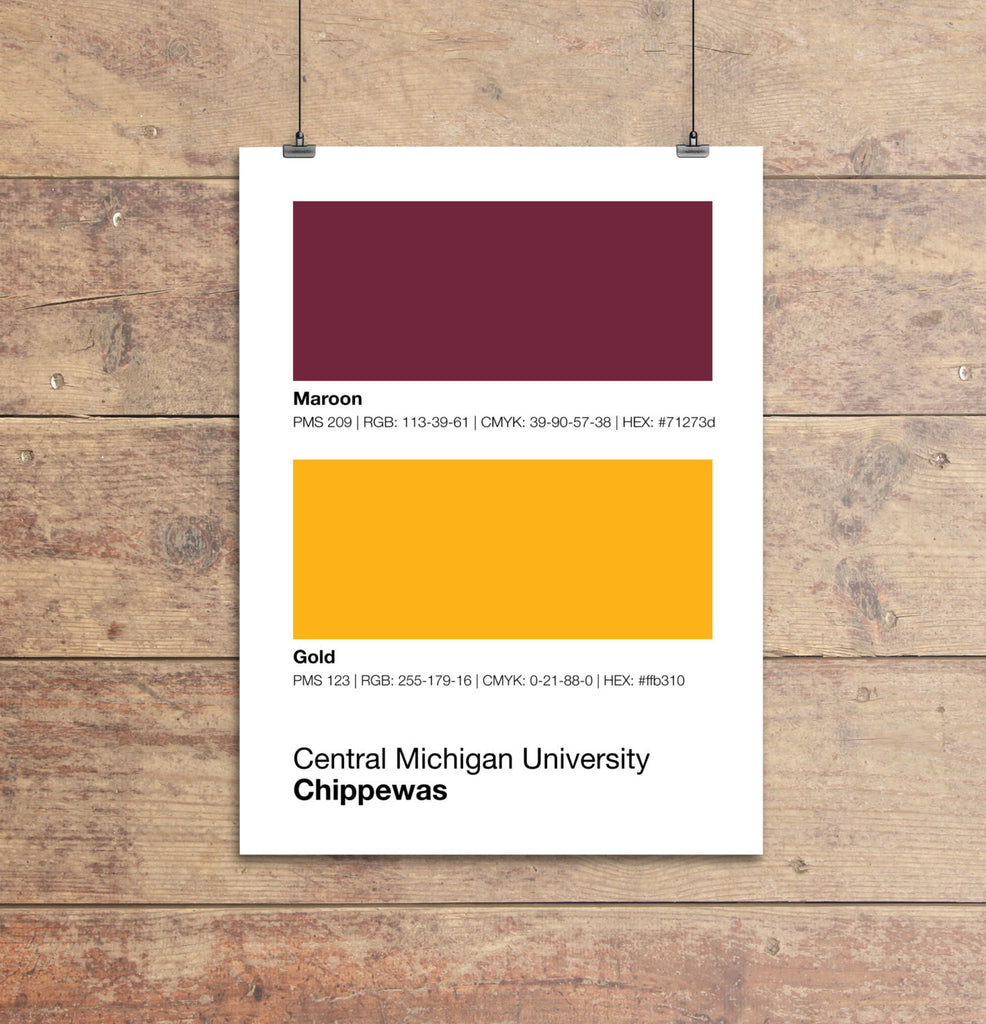 central-michigan-chippewas-gifts