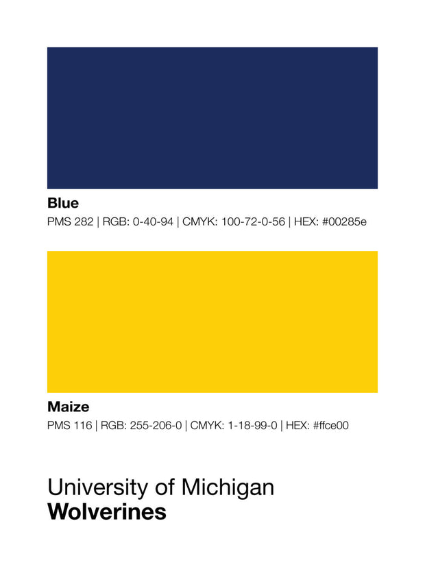 michigan-wolverines-shop