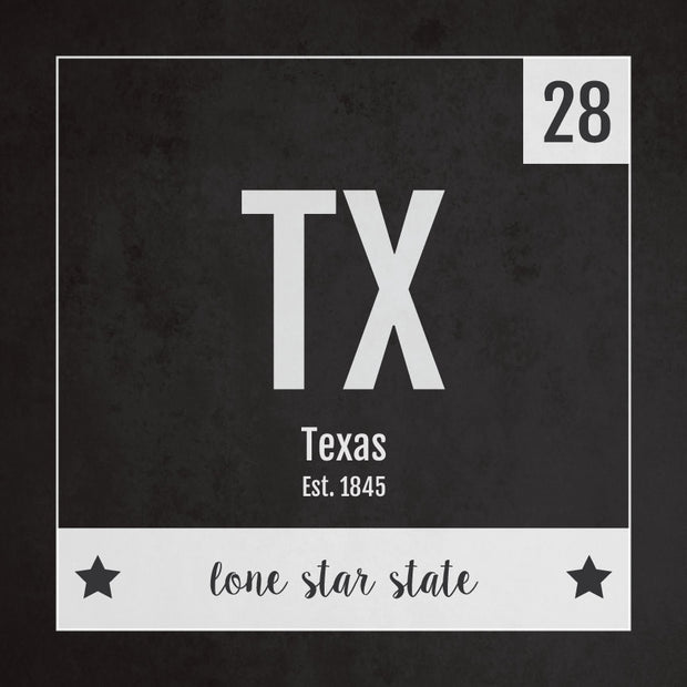 Texas US State Print